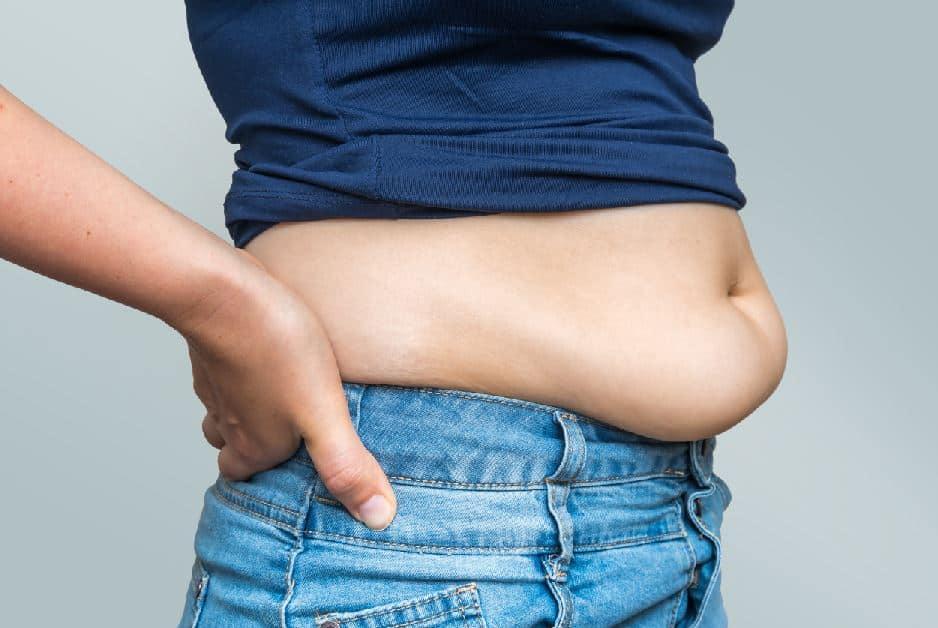 Fat burners nutrition supplements